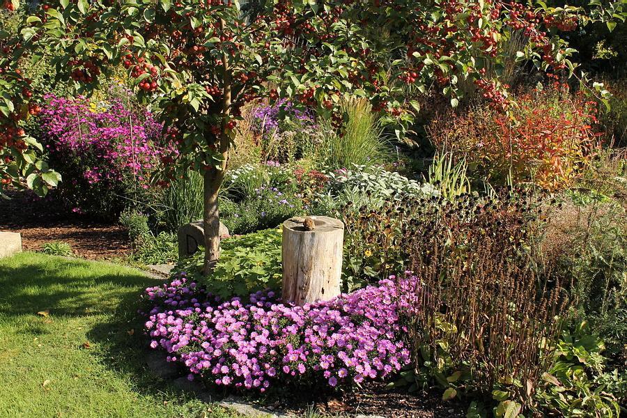 Vidiecke záhrady - inšpirácie - Obrázok č. 86