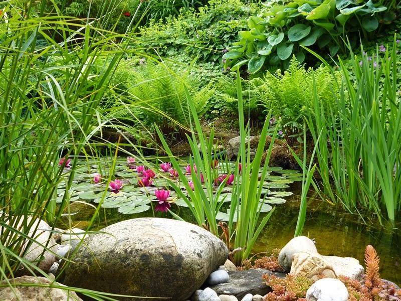 Vidiecke záhrady - inšpirácie - Obrázok č. 109