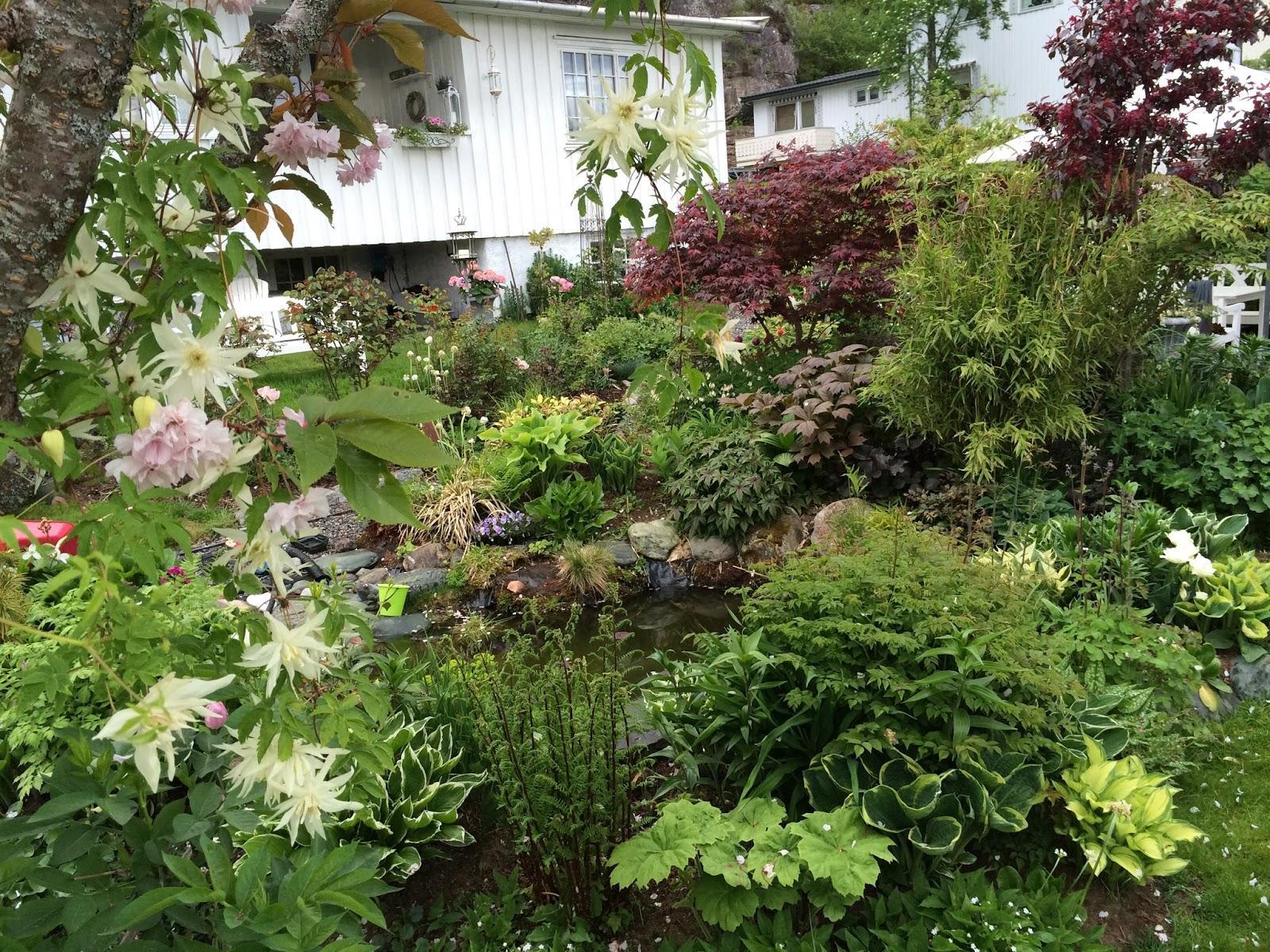 Vidiecke záhrady - inšpirácie - Obrázok č. 113