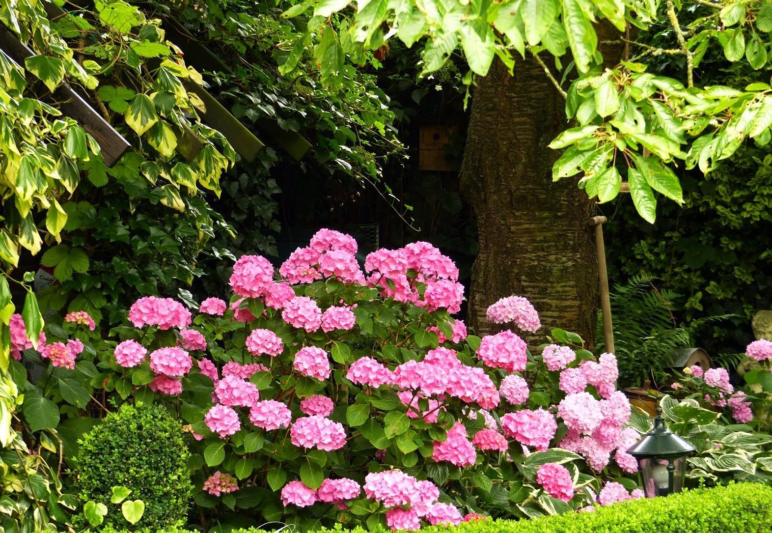Vidiecke záhrady - inšpirácie - Obrázok č. 134
