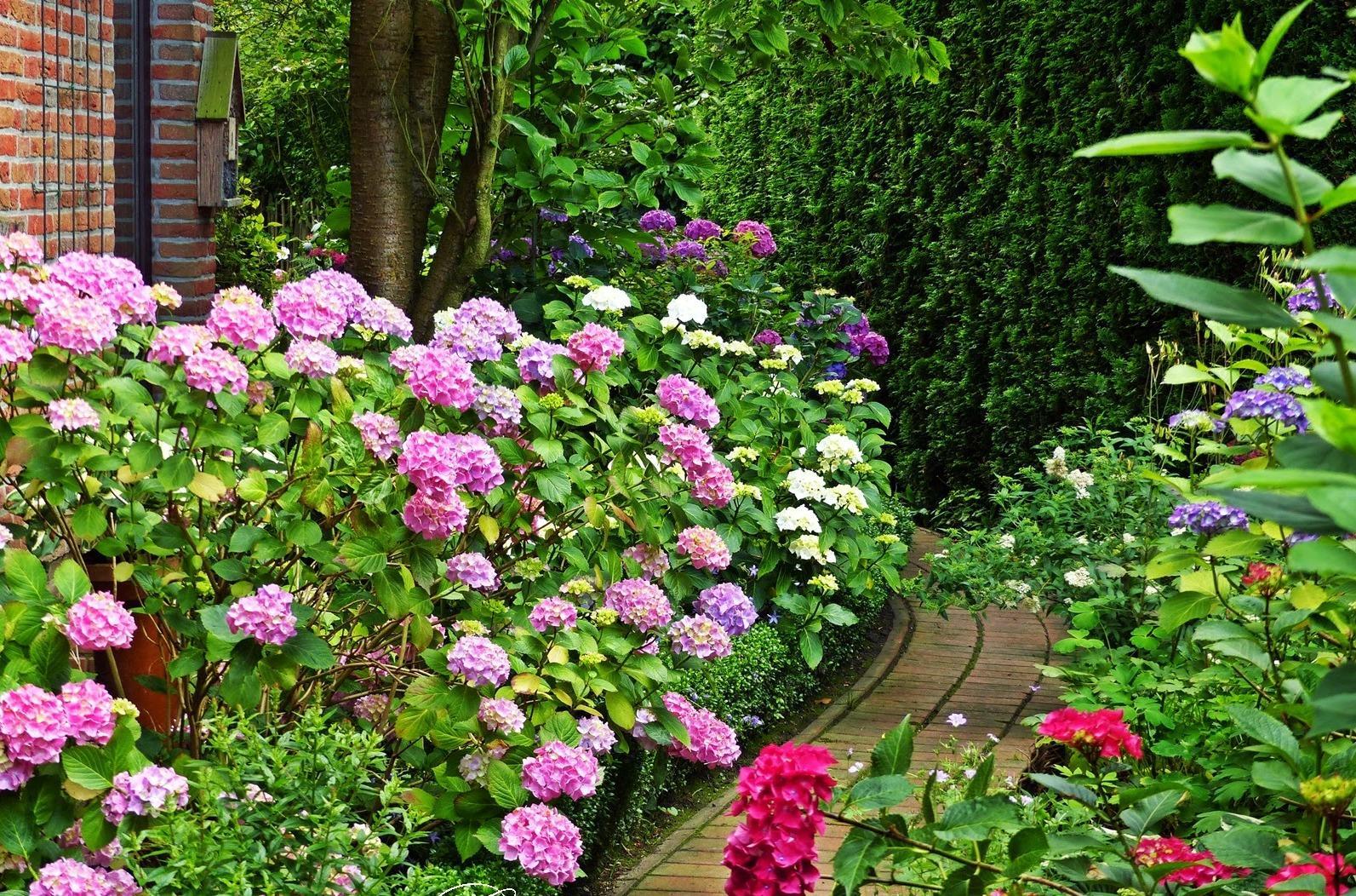 Vidiecke záhrady - inšpirácie - Obrázok č. 135