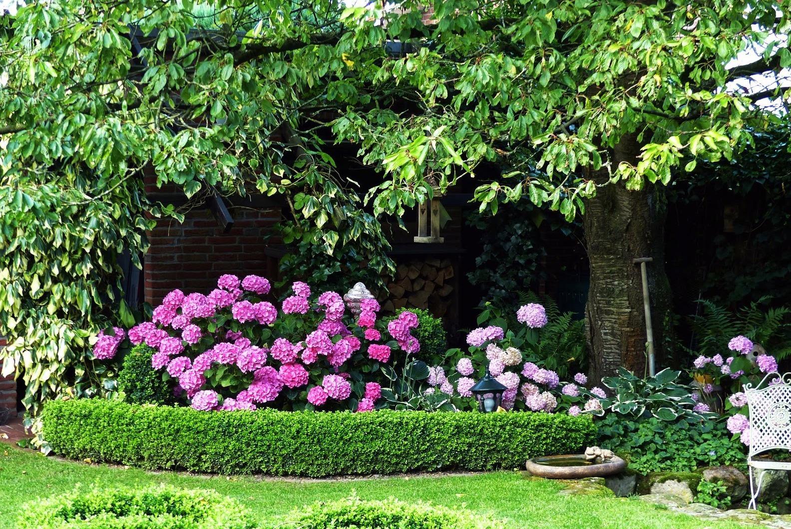 Vidiecke záhrady - inšpirácie - Obrázok č. 136
