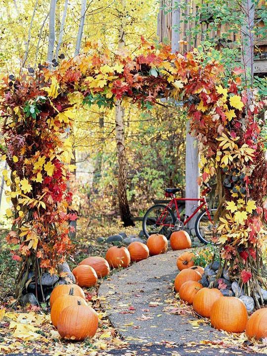 Užime si farebnú jeseň