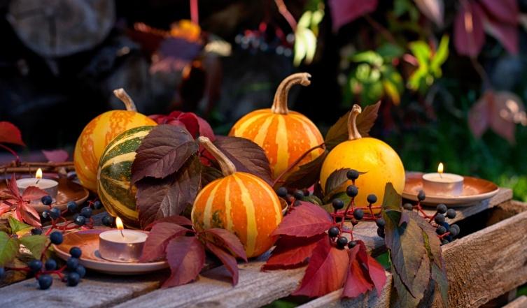 Užime si farebnú jeseň - Obrázok č. 16