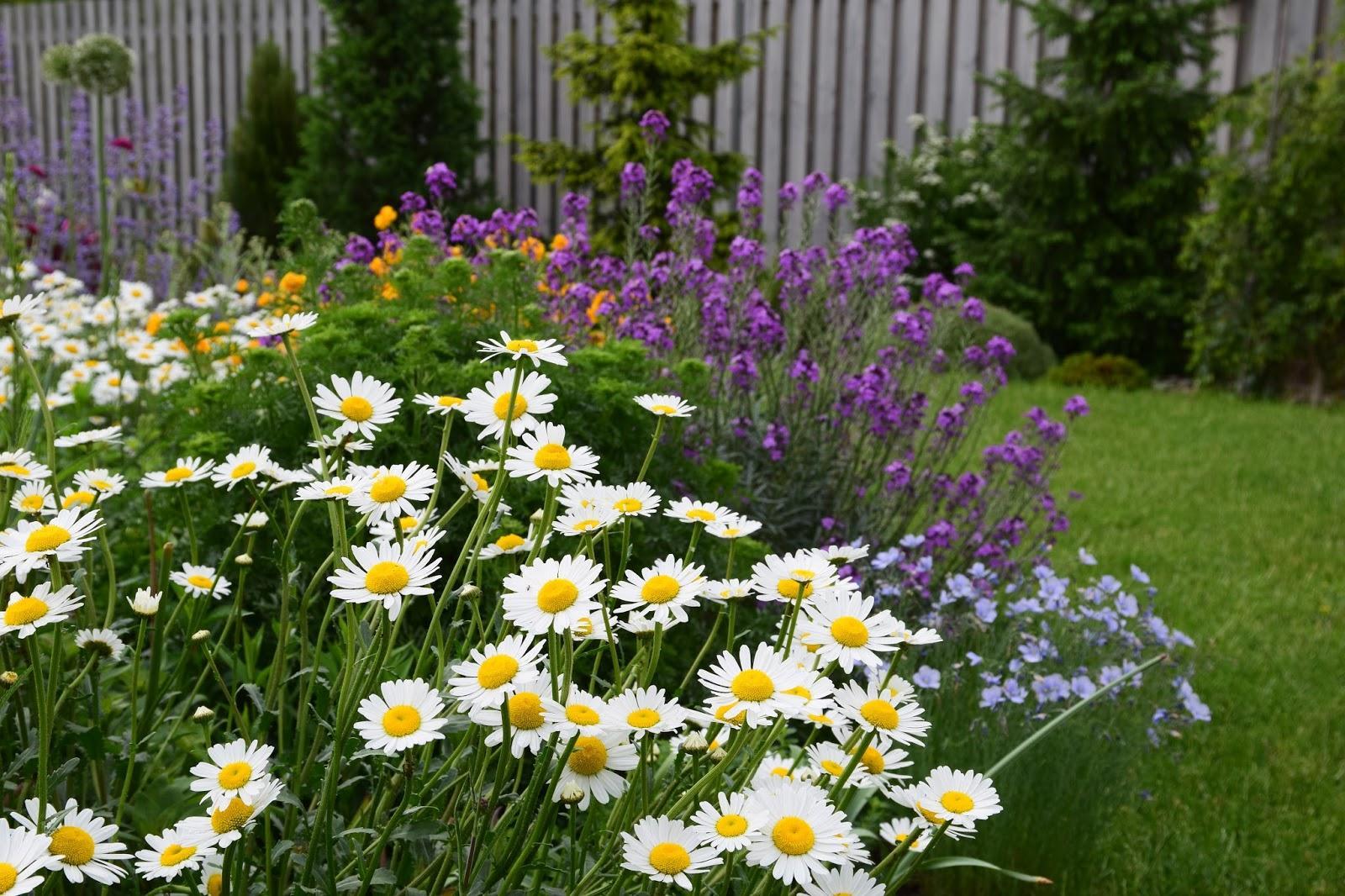Vidiecke záhrady - inšpirácie - Obrázok č. 249