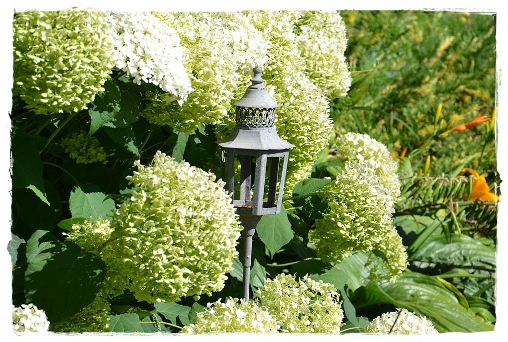 Vidiecke záhrady - inšpirácie - Obrázok č. 253
