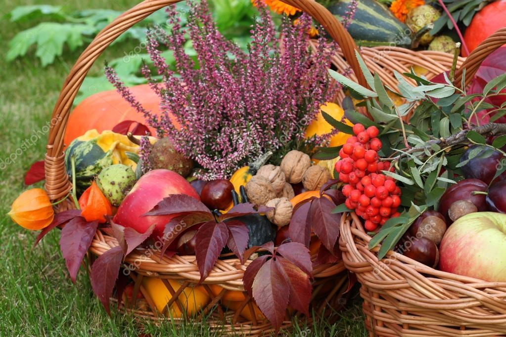 Užime si farebnú jeseň - Obrázok č. 84