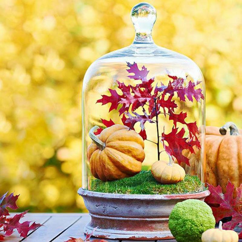 Užime si farebnú jeseň - Obrázok č. 91