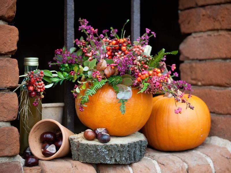 Užime si farebnú jeseň - Obrázok č. 103