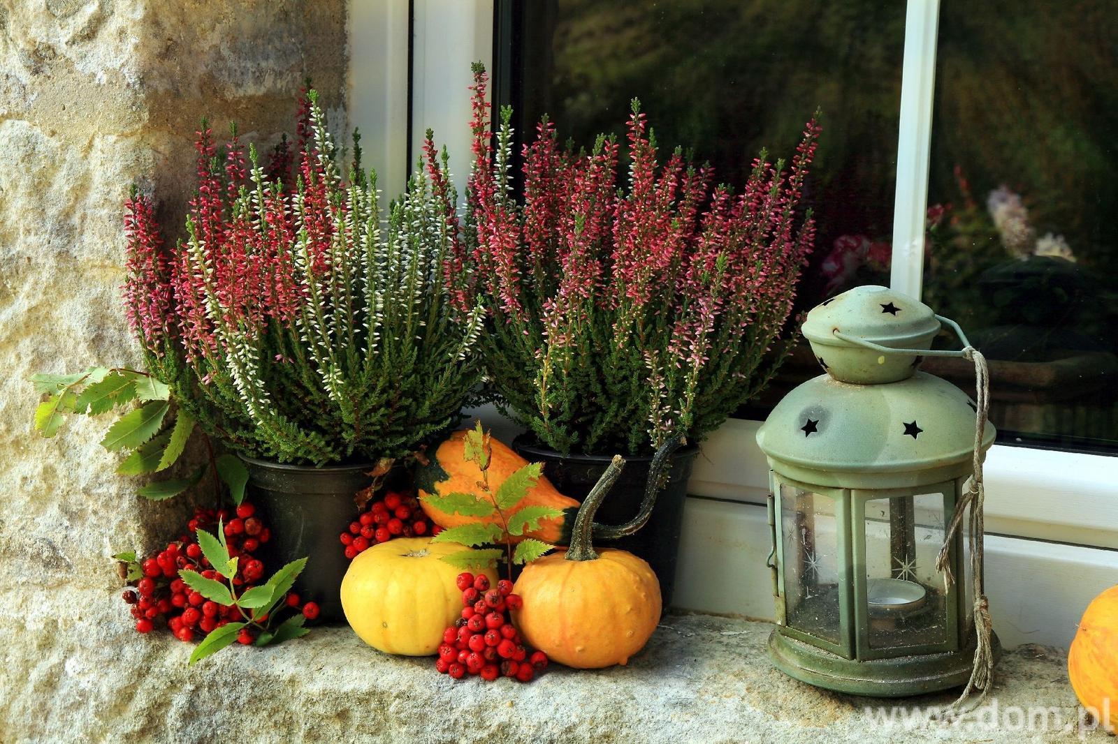 Užime si farebnú jeseň - Obrázok č. 109