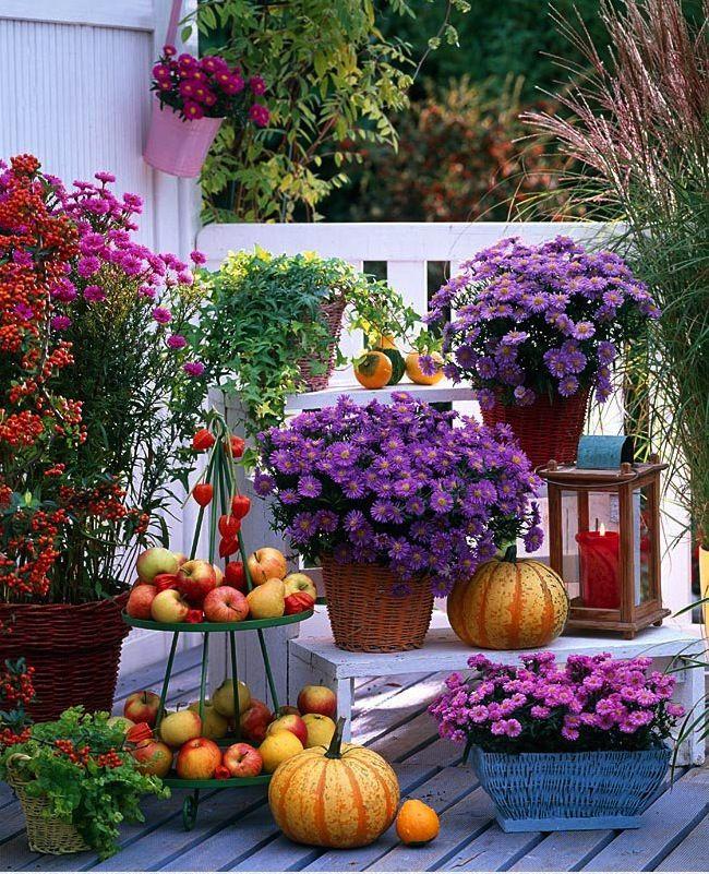 Užime si farebnú jeseň - Obrázok č. 114