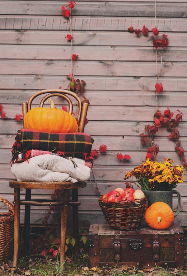 Užime si farebnú jeseň - Obrázok č. 134