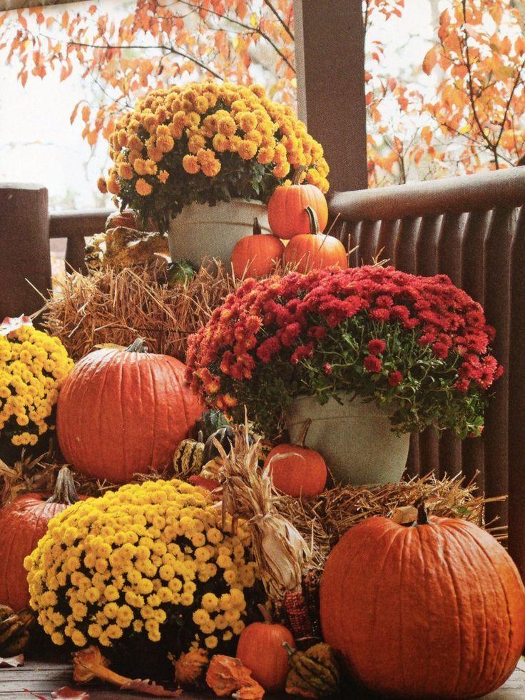 Užime si farebnú jeseň - Obrázok č. 143