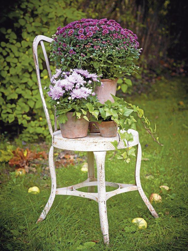 Vidiecke záhrady - inšpirácie - Obrázok č. 464