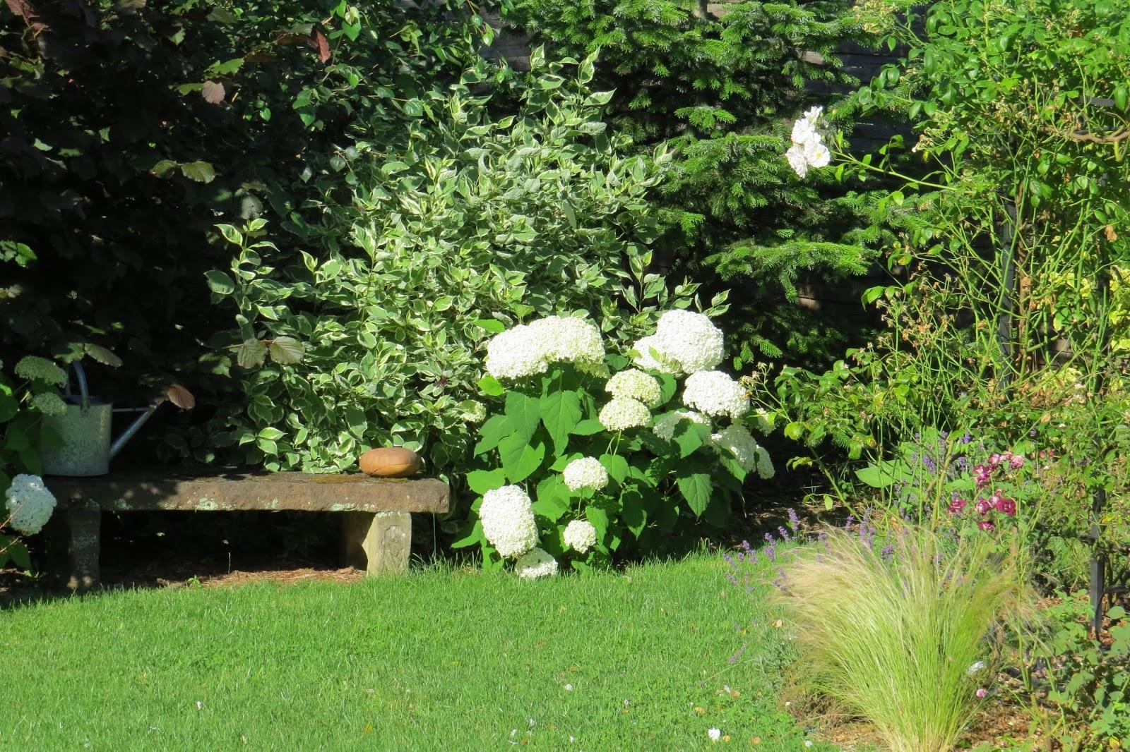 Vidiecke záhrady - inšpirácie - Obrázok č. 465