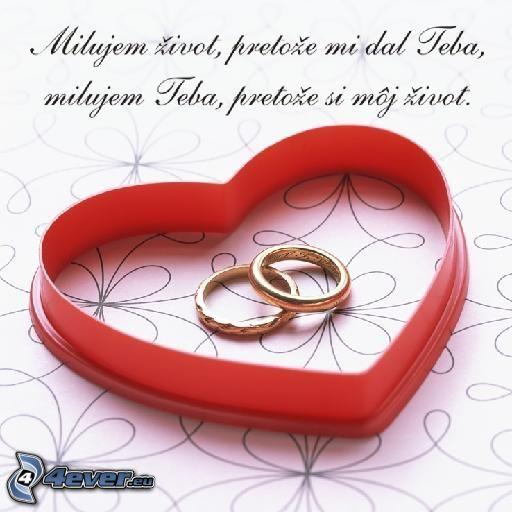 Bude svadba, svadbička :) - ...tie najkrajšie obrúčky, podľa našich predstáv, nám zhotovilo Zlatníctvo Jozef (Trnava)...
