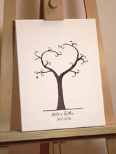 ...ešte zohnať nejaký pekný a originálny stromček...