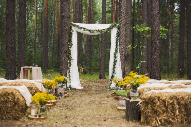 🌿🌳Kto sa chystá mať ekologickú svadbu?🌿🌳  Ako na ňu? Čítajte v najnovšom článku TU: https://mojasvadba.zoznam.sk/magazine/ekologicka-svadba-ako-na-nu - Obrázok č. 1