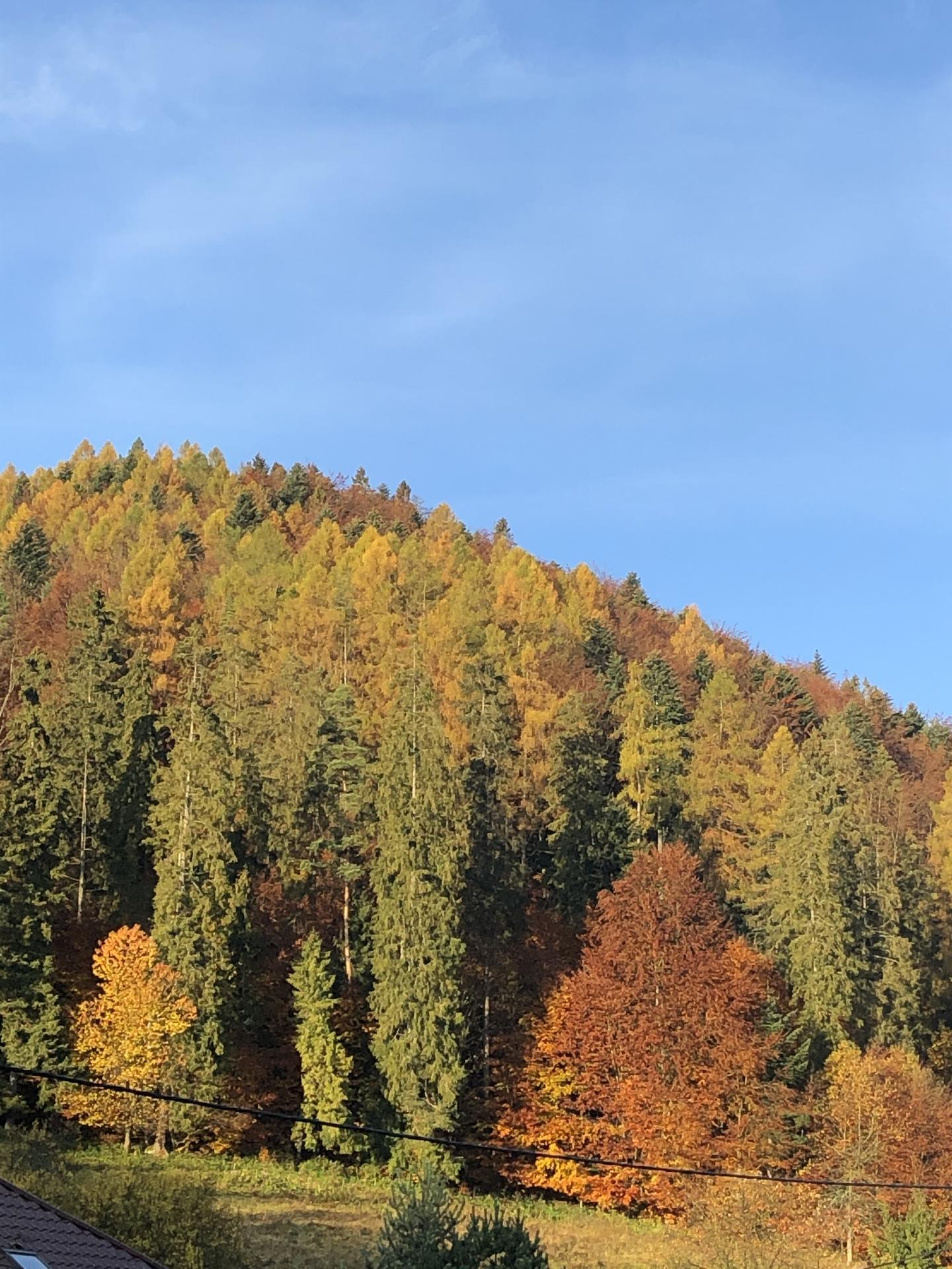 Naše chalúpkovo - Jesen pani bohatá ... 🍂