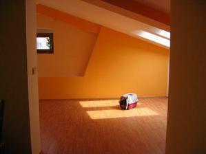 Kocour poprvé z novém bytě