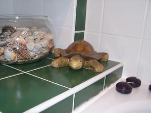 V kúpelni máme aj zvieratká :)