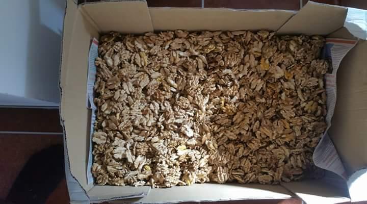 lupane vlasske orechy a lupane lieskove orechy - Obrázok č. 1