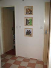 předsíň - dveře do koupelny a na WC