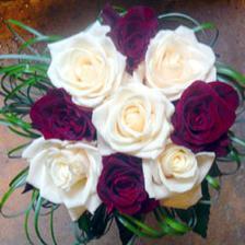 kombinace tmavě červené a bíle krémové růže je super