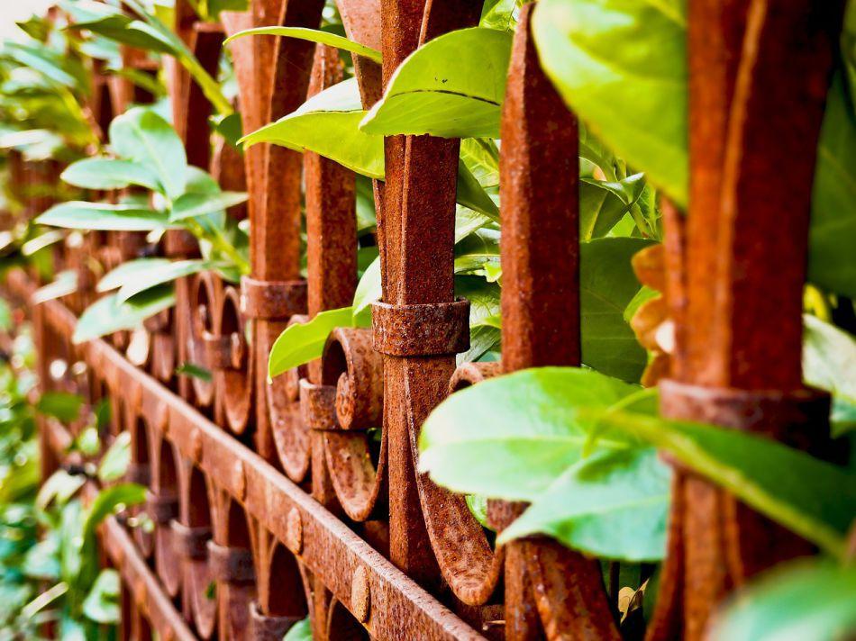 Prosím zamyslete se než začnete dělat plot na zahradě. Tůje a dvoumetrová betonová zeď není zrovna ideální řešení. :-) Krásný článek o zahradních plotech publikoval pan P. Chlouba. Stojí za přečtení: http://www.rozhlas.cz/cb/publicistika/_zprava/1610151 - Obrázek č. 1