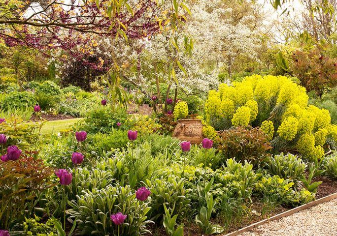Nejlepší čas plánovat zahradu. Web je sice anglicky, ale obrázky jsou všeříkající. :-) https://www.theenglishgarden.co.uk/plants/north-to-south-facing-garden-plants/?fbclid=IwAR0OJaNyoqwX7UN27UYvwvt2BRCb6GSIZelOt7018YIjxlOYXwwwpcUizdo - Obrázek č. 1