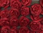 ...k tomu pak budou jemně rozseté papírové růžičky...mám je objednané v oranžové a smetanové barvě....