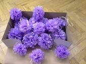 Pompoms lila 15 cm,