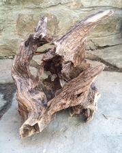 Vykopal som zaújmavý koreň z ktorého bude svietnik :)