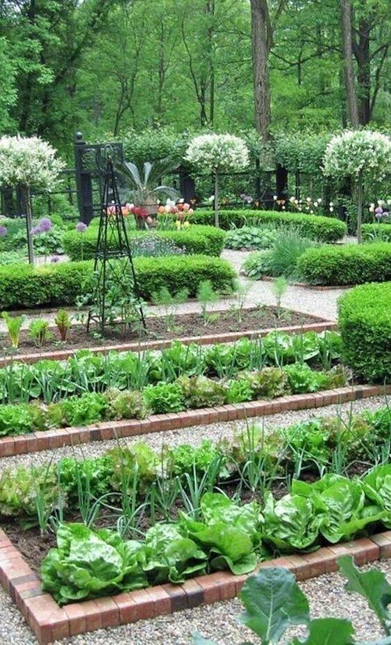 Nápady ven, zahrada, terasa, voda - Nebo zelenina v ohrádce