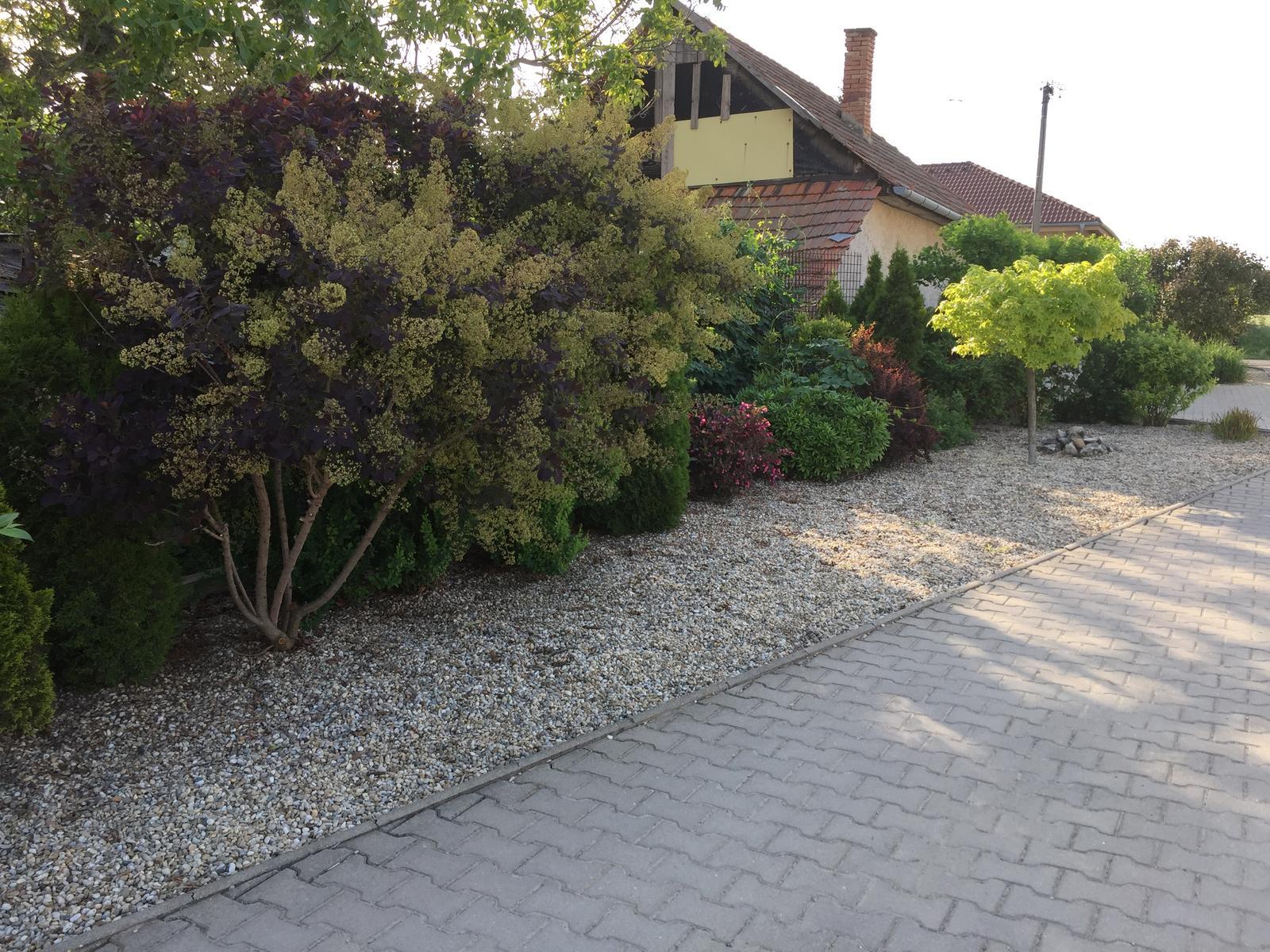 Okolie domu - Obrázok č. 117