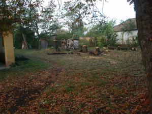 Už sa pracovalo na vypilovaní stromov, bolo ich teda dosť 07.10.2009