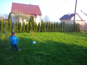 a opet na porovnani tuje jak vyrostly prez zimu-neuveritelne :-)Tady je jeste neposekana trava,ted uz mame :-)