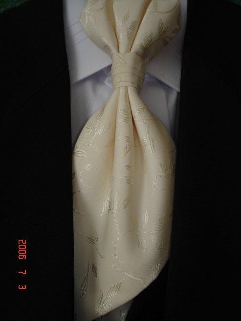 Topoľčany - 26 august 2006 :-) Môj Bielo-Zlatý Album - Detail franc.kravaty
