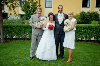 svatební maltezák a bišon