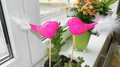 Ptáčky budeme mít jako figurku na dort 'pipínci':-))