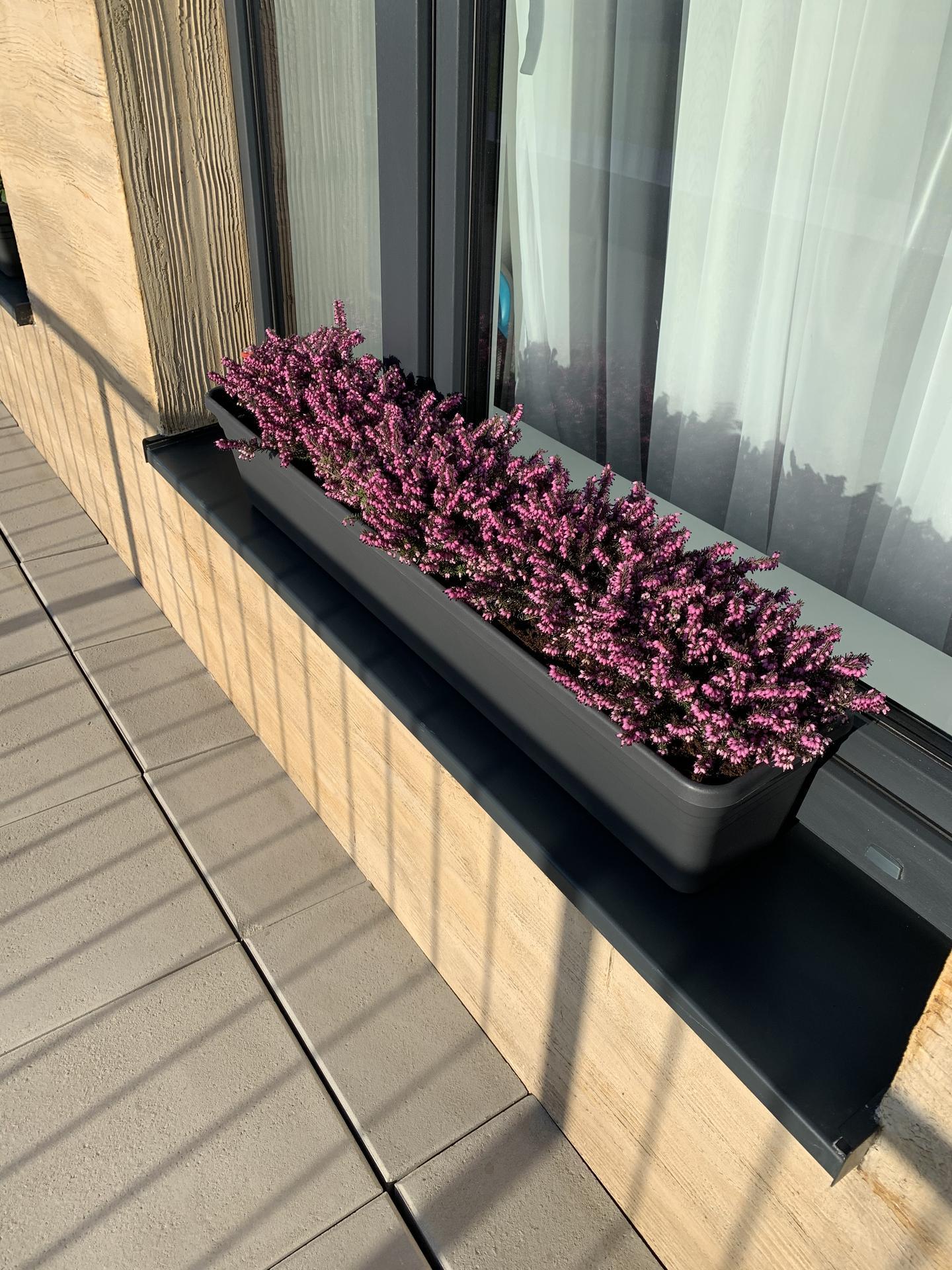 Teraska na streche - Obrázok č. 20