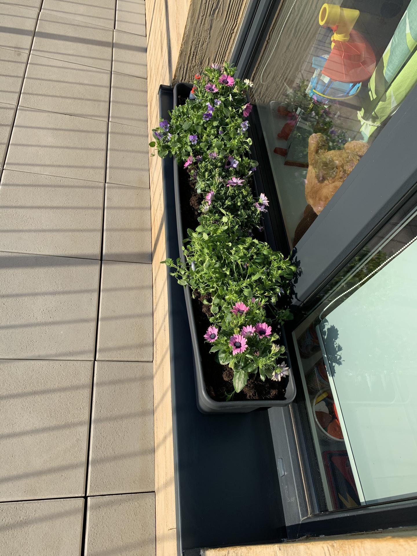 Teraska na streche - Obrázok č. 21