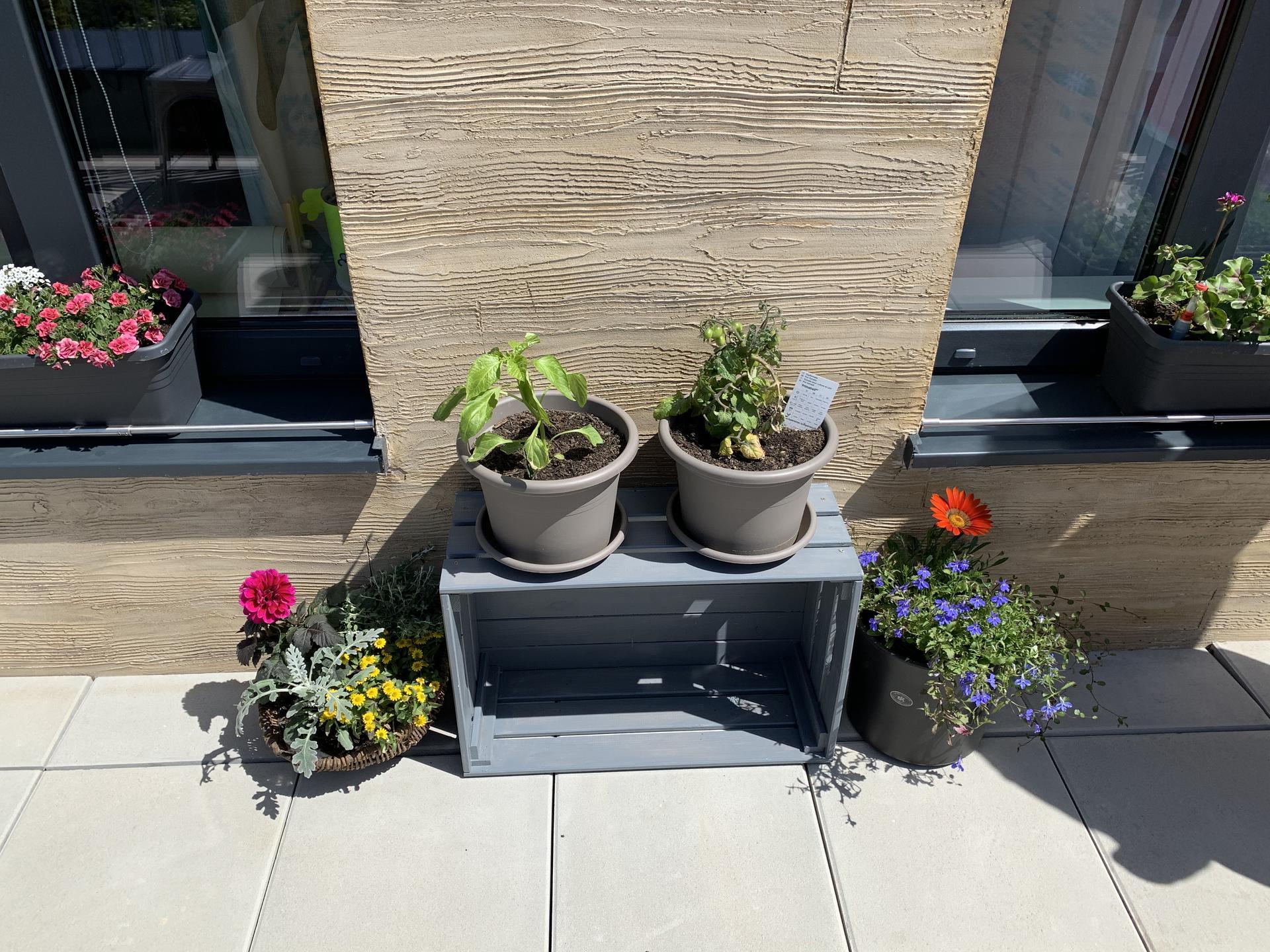 Teraska na streche - Obrázok č. 88