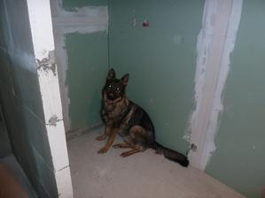 nas psik si nasiel miesto v sprchovom kute :)