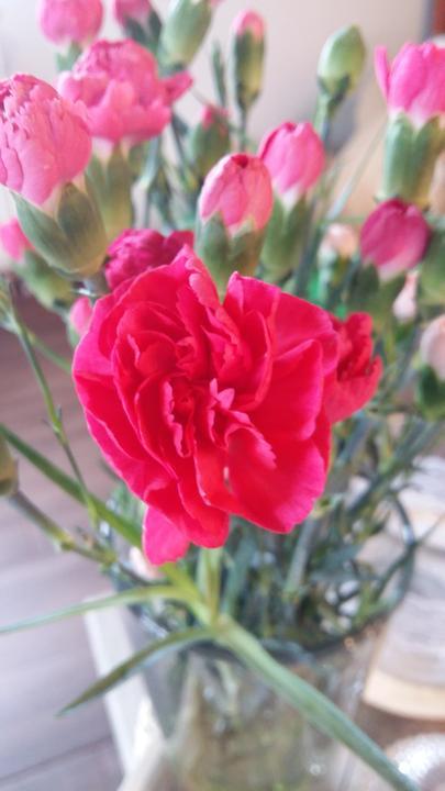 Přírodní barvu oživíme tmavě růžovými karafiáty :)