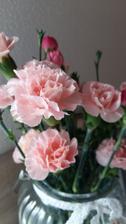 Budou i pudrově růžové :)