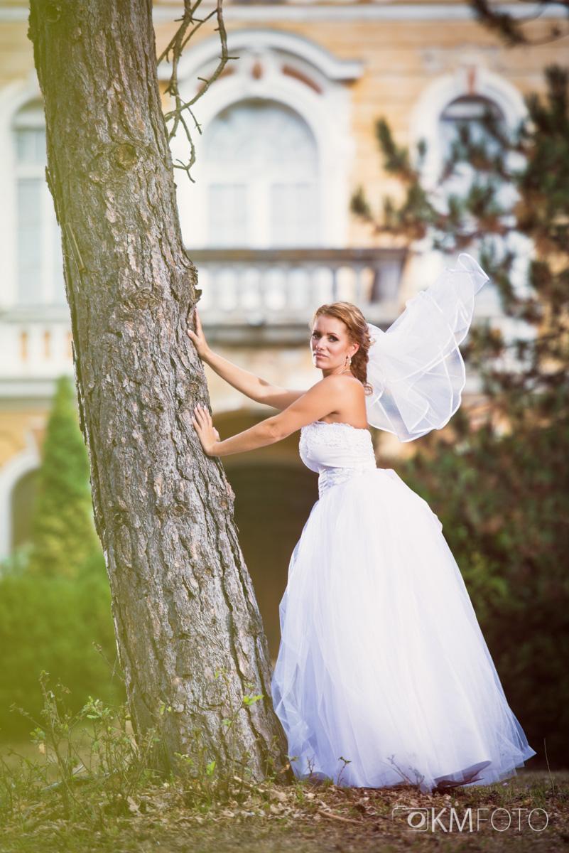 Tylové svadobné šaty - Obrázok č. 2