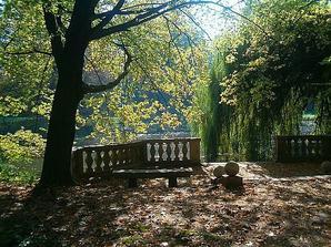 Když nám otevřou park po vichřici bude svatba nakonec tady:-)