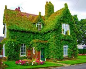 Inspirace záhrada a domky - Obrázek č. 4