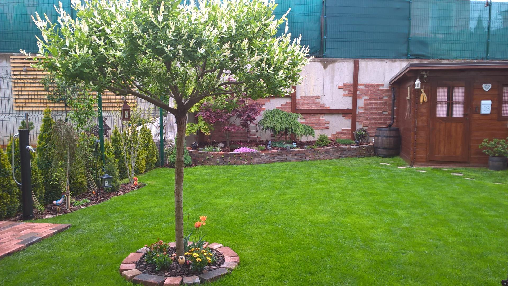 Malá záhradka - Obrázok č. 2